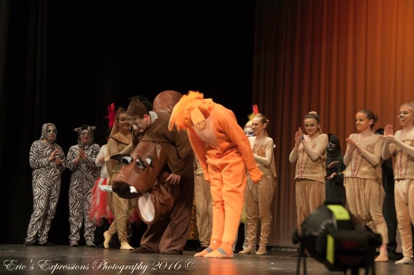 lionkingjr2016-48